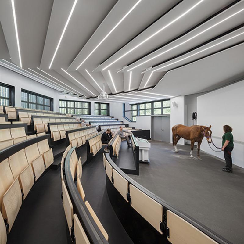 Freie Universität Berlin – Klinik für Pferde © Werner Huthmacher